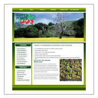 Koppes strawberry plants (HTML)